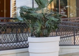 James Traditional Planter - Outdoor