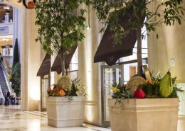 Custis Modern Planter - Large Entryway Displays